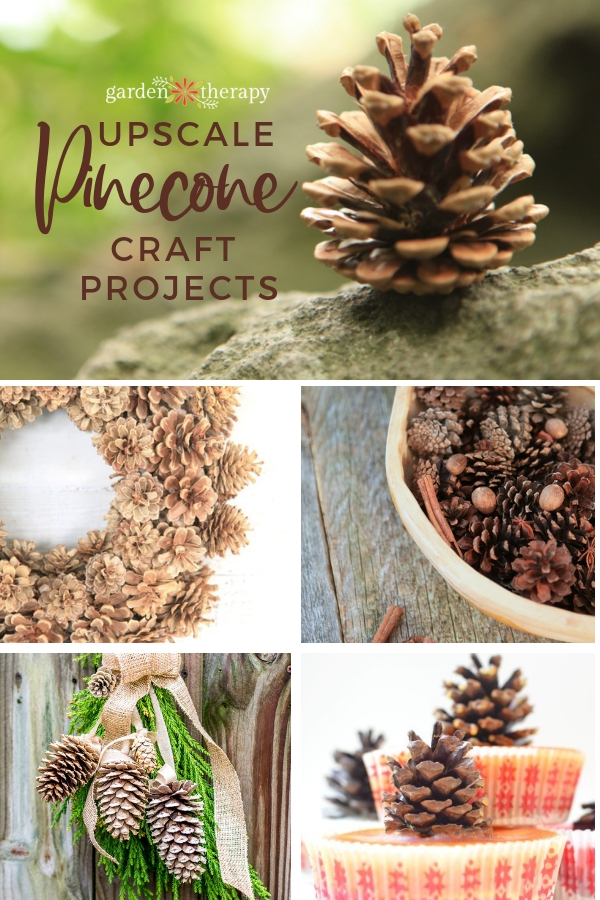 Elegant Upscale Pinecone Crafts Garden Therapy