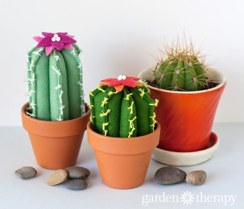 DIY Cactus From Felt