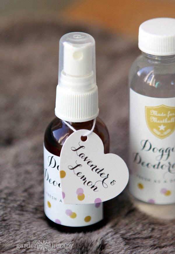 DIY Doggie Deodorant Lavender and Lemon Scent