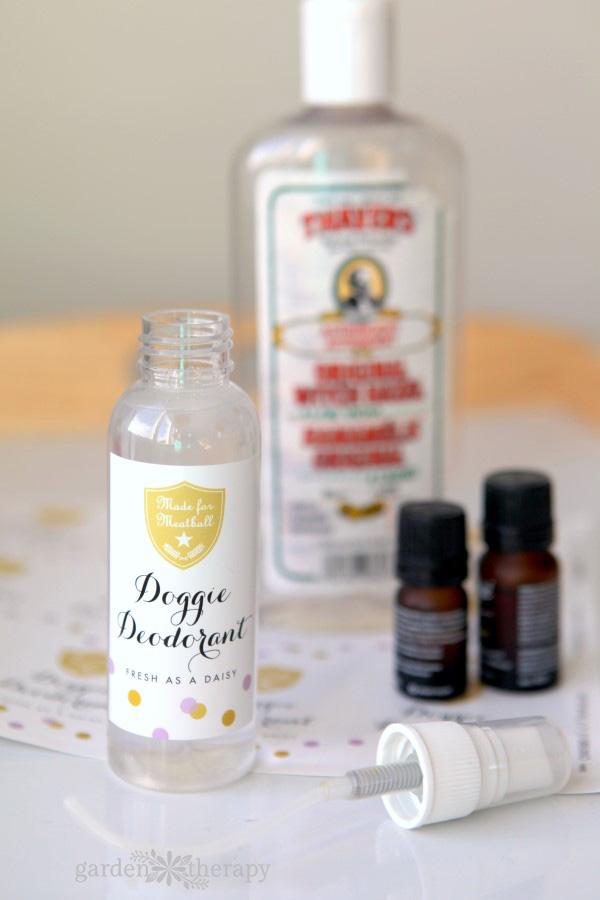 DIY Doggie Deodorant Recipe