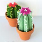 felt cacti