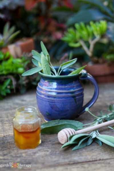 Fresh sage and honey tea