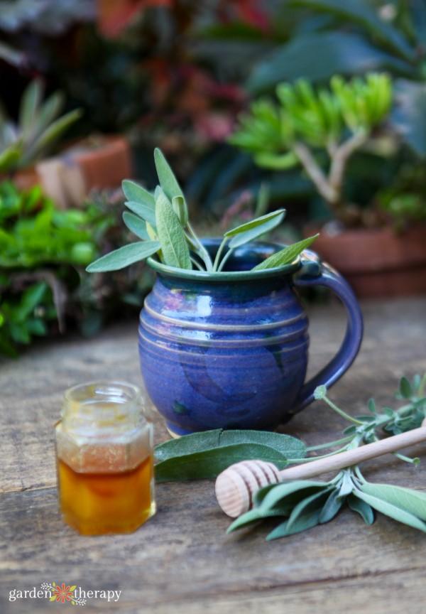 Fresh sage and honey tea