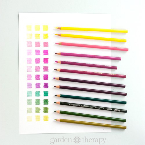 How to Create a Custom Color Palette for Adult Coloring (2)