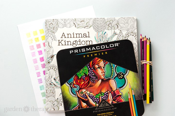 How to Create a Custom Color Palette for Adult Coloring (6)