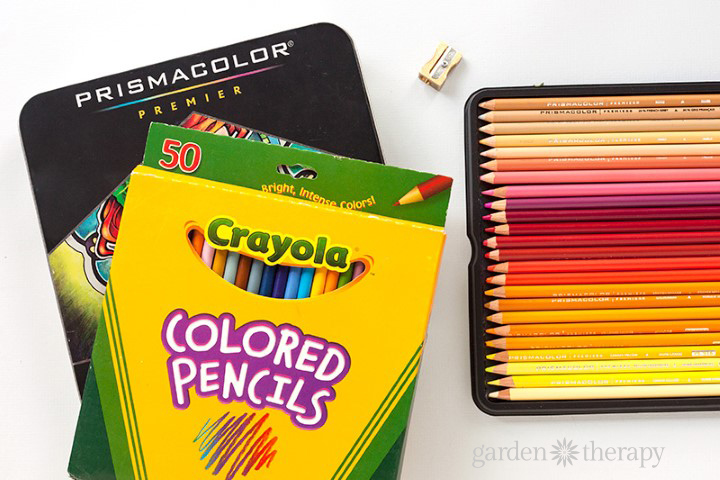 How to Create a Custom Color Palette for Adult Coloring (7)