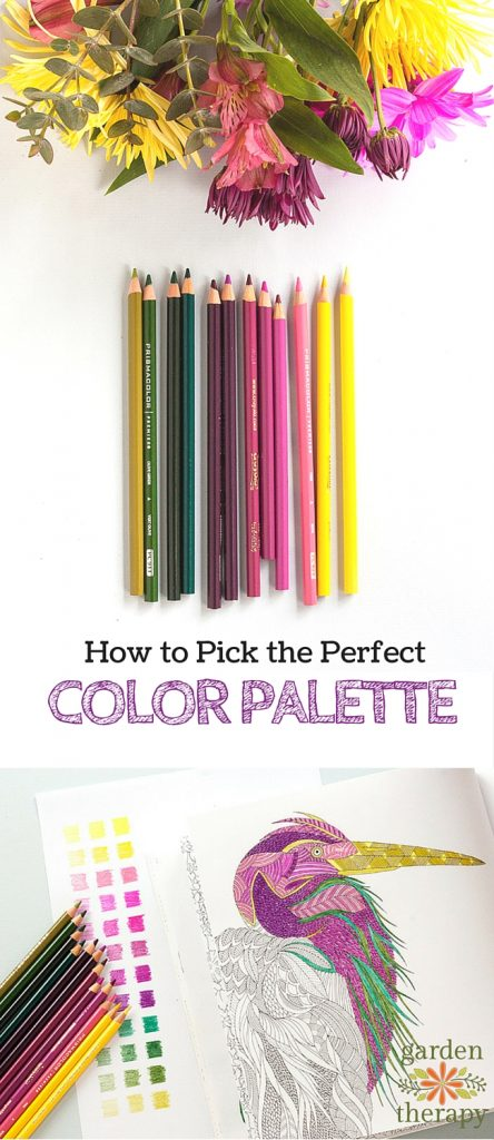 Color Like a Designer How to Choose