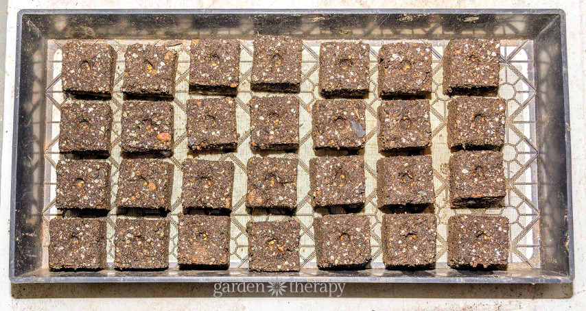 Soil Block Guide (7)
