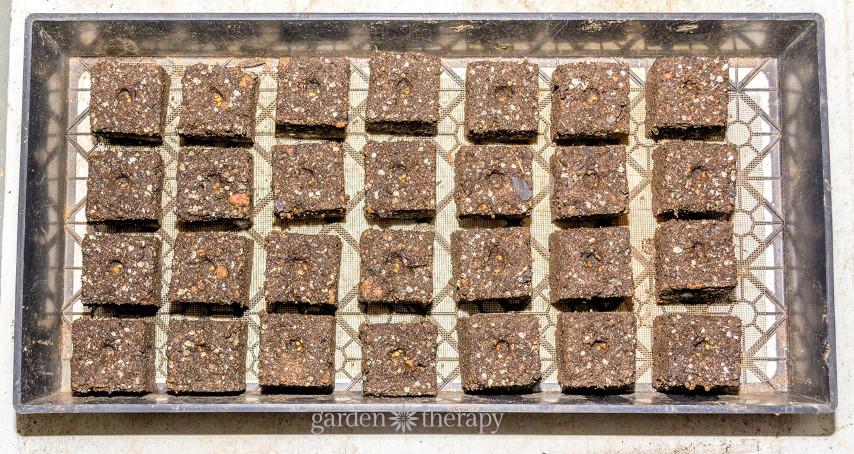 Soil Block Guide (7)