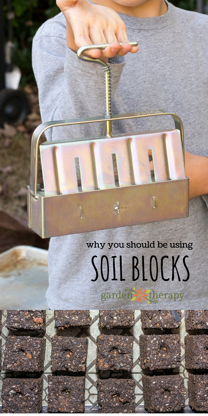 Garden Therapy Different Garden Ideas: These Easy & Economical Soil Blocks Will Change How You