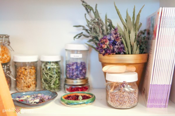 Home apothecary shelf stocked with dried botanicals