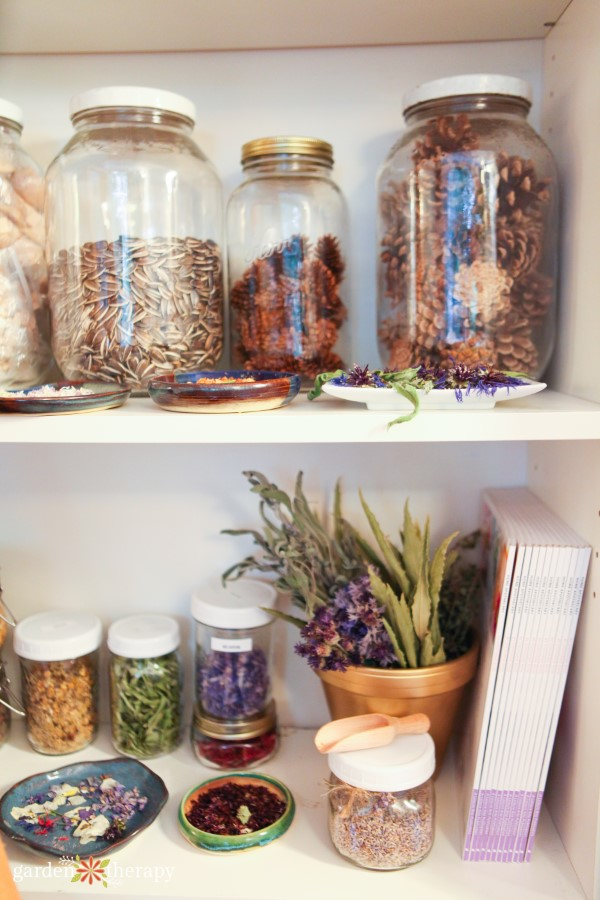 apothecary shelves stocked with dried flowers, herbs, and more