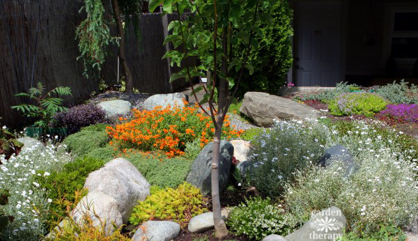Carpet gardening with colorful groundcovers