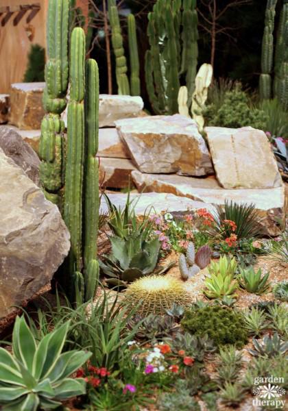 Drought tolerant landscape carpet gardening