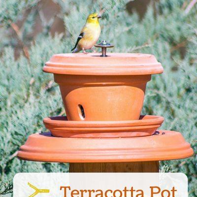 Put Backyard Birds on a Pedestal with this Flowerpot Bird Feeder