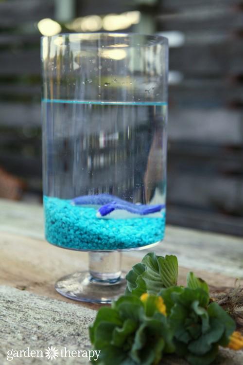 An Eerily Beautiful Indoor Water Garden Garden Therapy