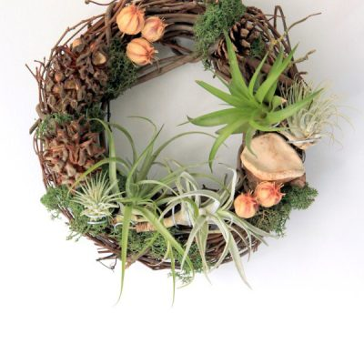 This Lush Living Air Plant Wreath Has a Secret