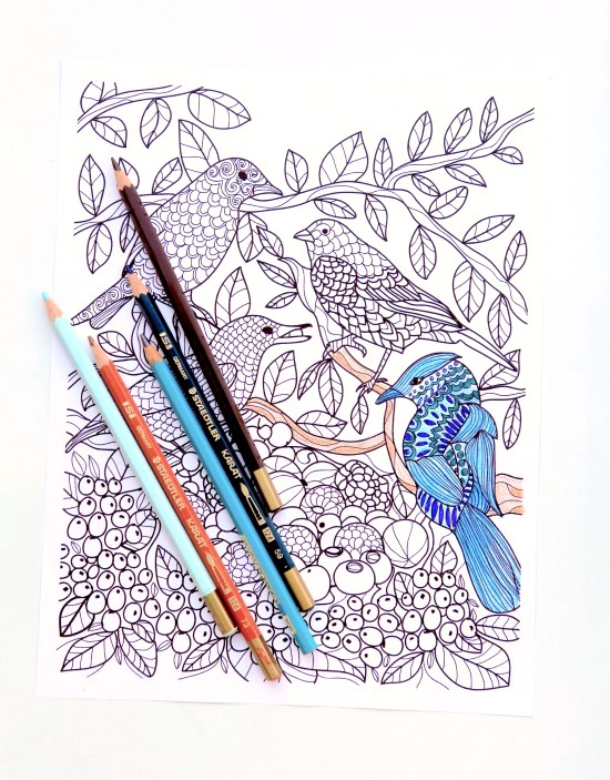 Tips for coloring like a grown up!
