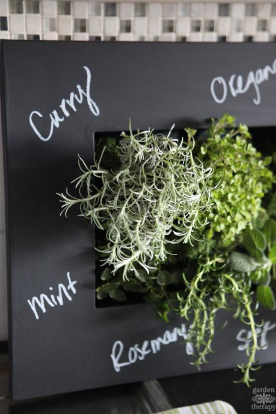 Chalkboard Frame Indoor Herb Garden