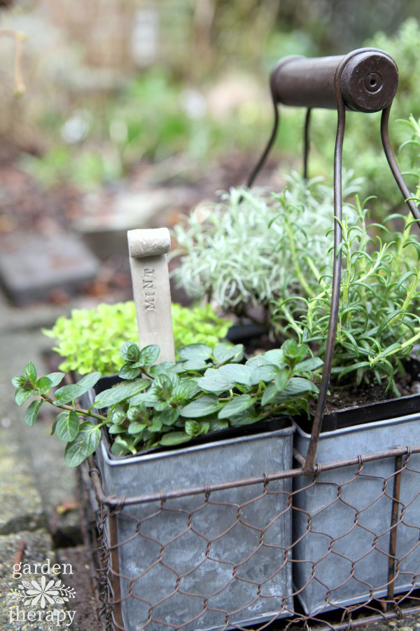 DIY Clay Plant Tags for Herbs