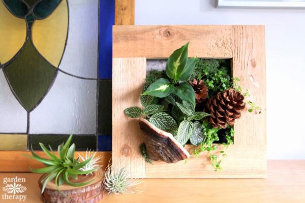 DIY Living Art Frames