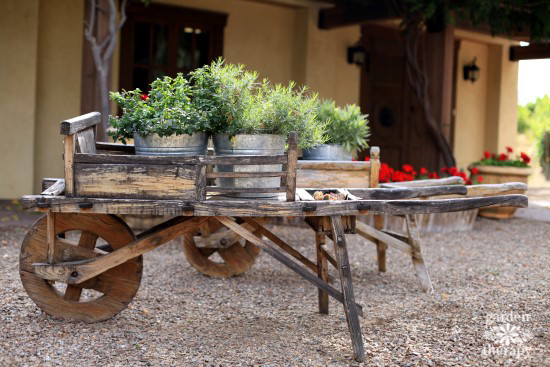 Herbs Growing Outdoors in a Wooden Wagon