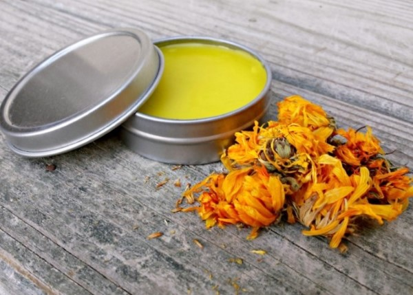 Homemade calendula salve recipe
