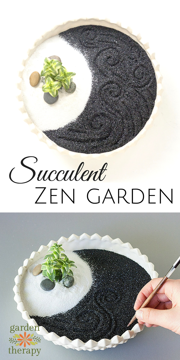 How to Make a Therapeutic Succulent Zen Garden