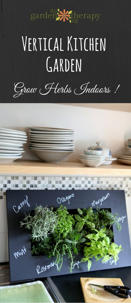 How to grow herbs indoors in a small space - vertical herb garden DIY