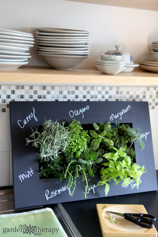 Vertical herb planter with chalk labels
