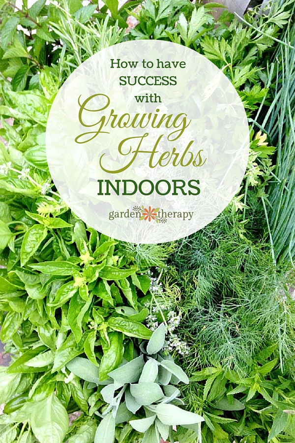 how to grow herbs indoors successfully  garden therapy, Beautiful flower