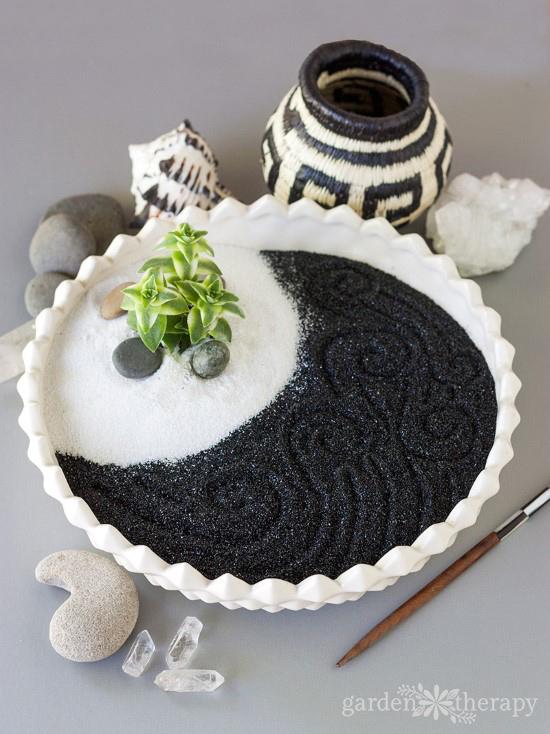 Make a calming succulent zen garden