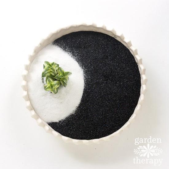 Succulent Zen Garden Step (5)