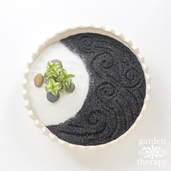 Succulent Zen Garden Step (6)