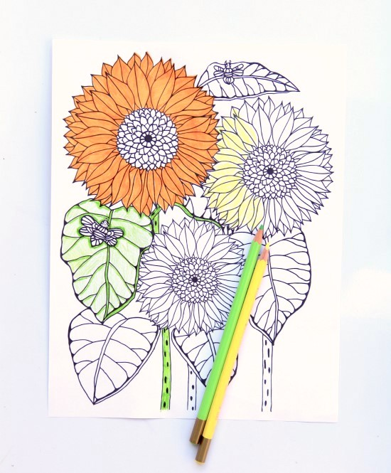 Sunflower from the Garden Therapy Coloring Book