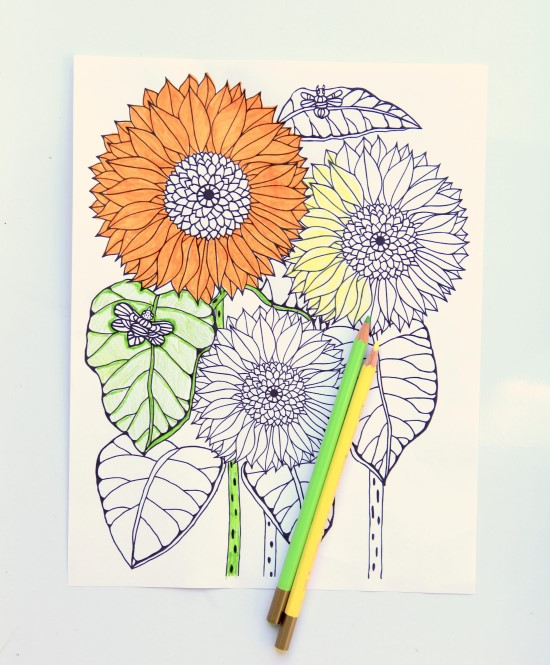 Sunflower image from the Garden Therapy Coloring Book