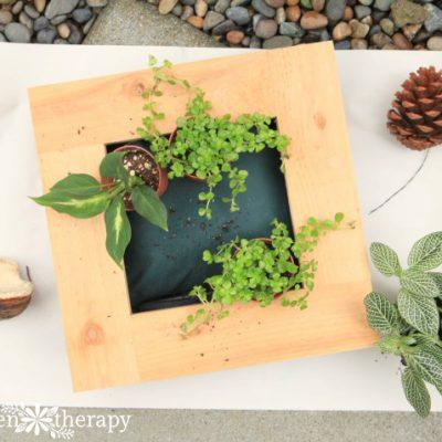 Where Gardens and Art Collide: WallFlower Living Frame