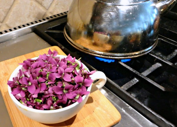 Cooking violets for soda syrup