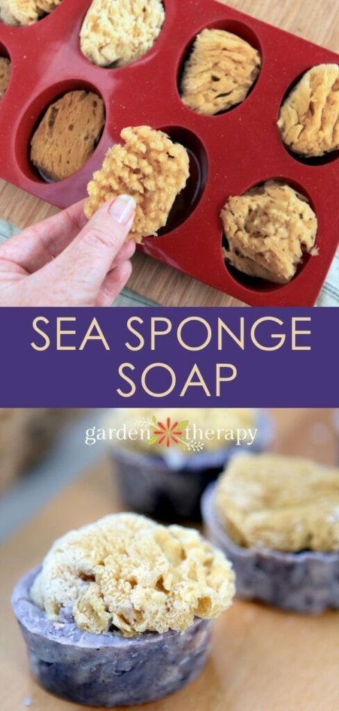 Handmade Sea Sponge Soap Bars