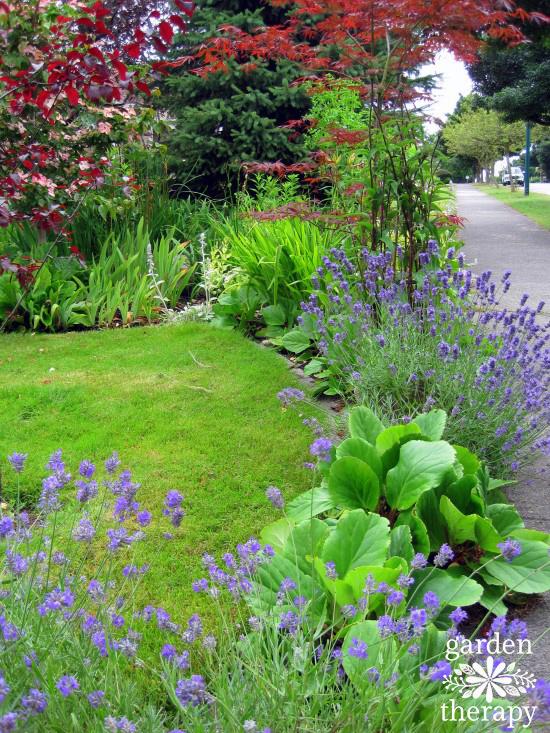 Street Side Garden Bed