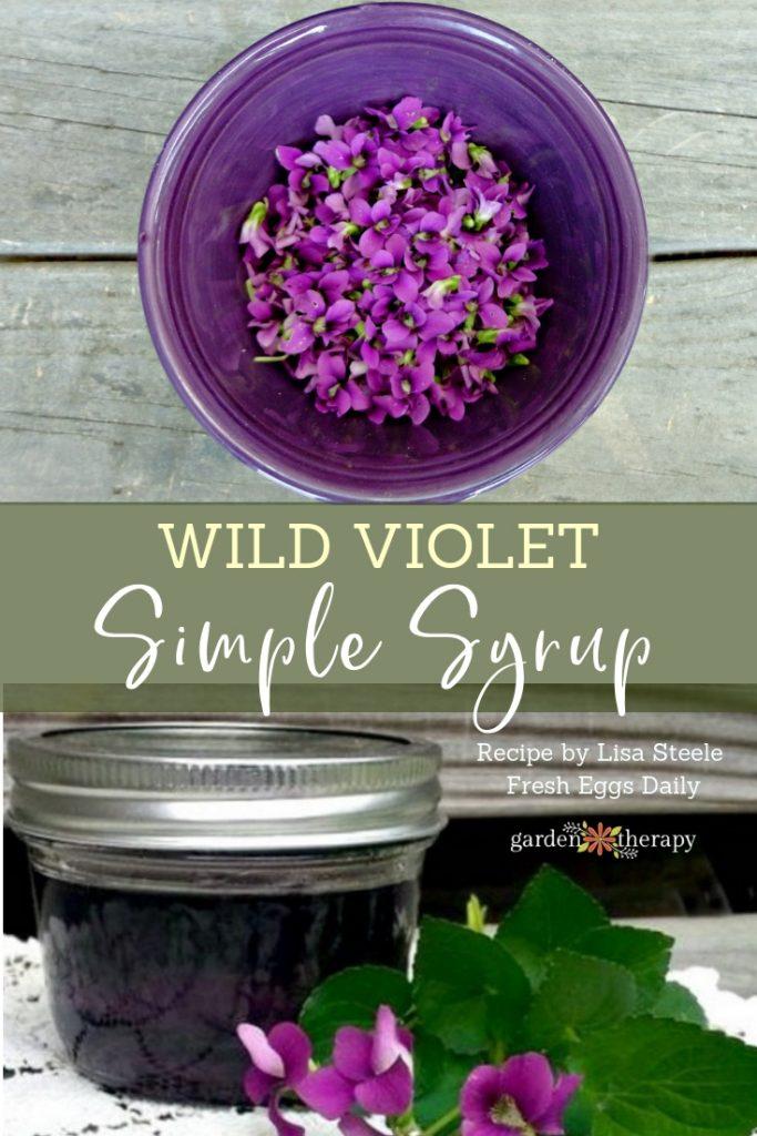 Wild Violet Simple Syrup Recipe