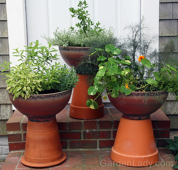 Herb Pots for a Cocktail Hour Garden
