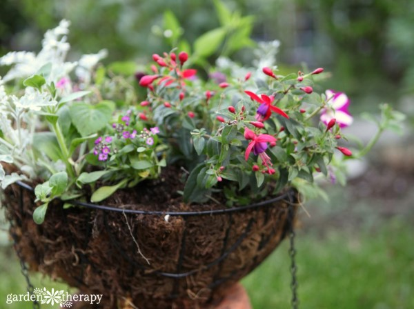 hanging basket design