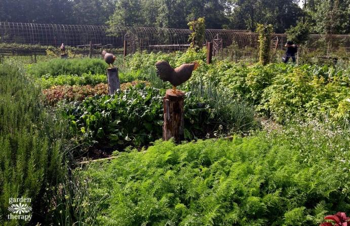 Moss Mountain Farm Garden2Grow2016 (3)