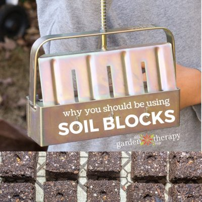 These Easy & Economical Soil Blocks Will Change How You Garden
