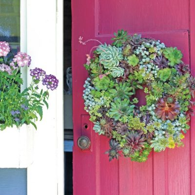 How to Make a Living Semper-Viva Succulent Wreath