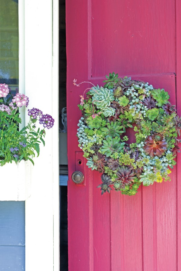 succulent wreath hanging on the front door