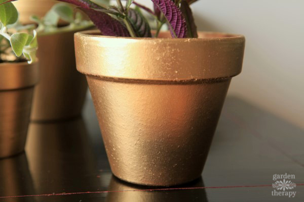 textured gold painted terracotta pot