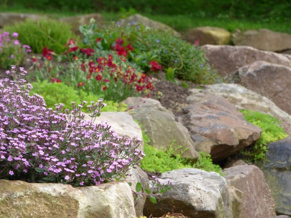 A Beautiful Rock Wall Garden