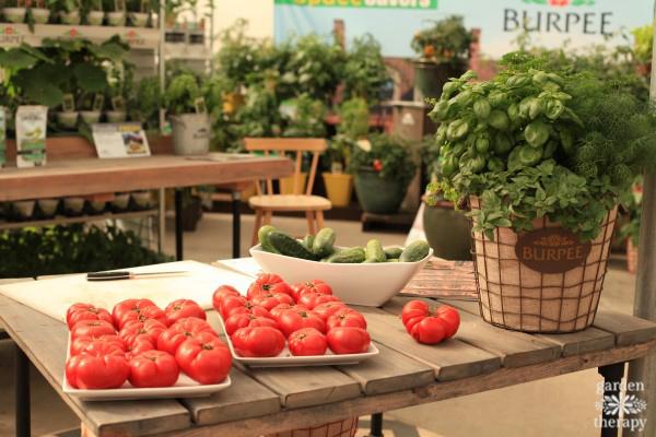 Burpee Home Gardens display